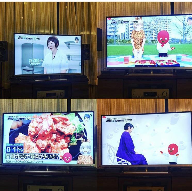 テレビ朝日「ポルポ」出演