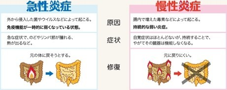 急性炎症と慢性炎症