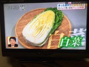 白菜レシピ